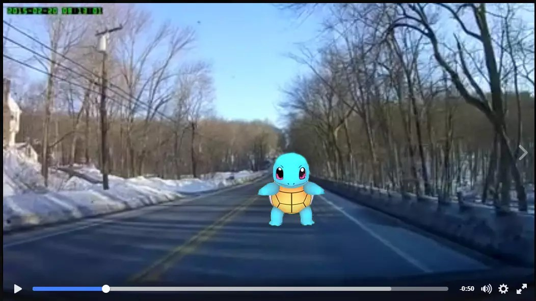 Squirtle Caught In Attempted Auto Insurance Fraud