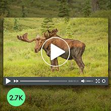 H3 2.7K Video 20MP Photo 1