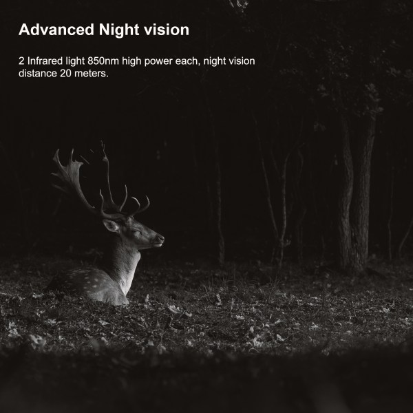 H2 Night Vision