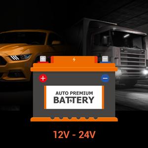 Intelligent HWK Compatible 12 – 24V Vehicles