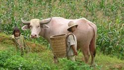 farm-children-250.jpg
