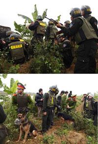 Lực lượng đông đảo cảnh sát đặc biệt đang cưỡng chế các khu đất không được dân đồng ý giao ỡ Tiên Lãng