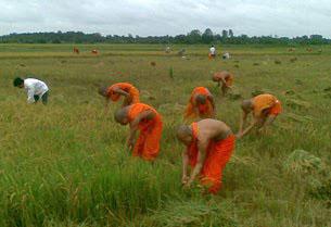 Các nhà sư Khmer Krom ở vùng An Giang ráp danh Campuchia