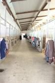 Stall 1