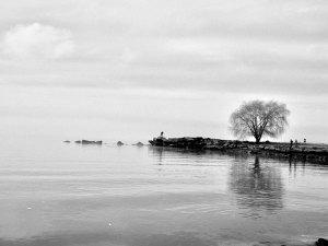 数年前に撮影したEdgewater Parkのビーチ。引っ越したら、この風景から遠くなりますなぁ。。。
