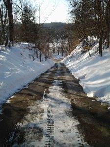 このドライブウェイと冬は、スノウブロアーなしでは生きて行けません。