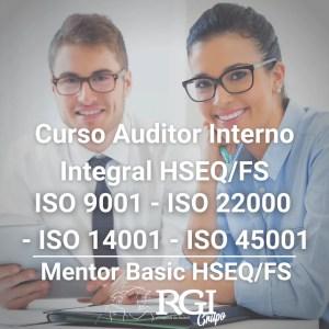 CURSO-AUDITOR-INTERNO-INTEGRAL-HSEQFS