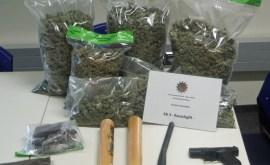 pol-su-ermittlungsgruppe-der-polizei-stellt-16-kg-drogen-sicher