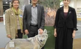 01400 61.023 Eröffnung Ausstellung Wolf-print(P000691257)