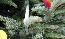 Weihnachtswunschbaumaktion 2018 der Stadt Niederkassel