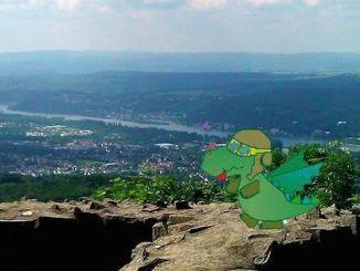 Blick von der Löwenburg