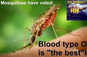 blood type o mosquitoes
