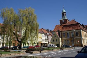 Why is Lower Silesia so high for rh negative frequencies? Sroda-slaska