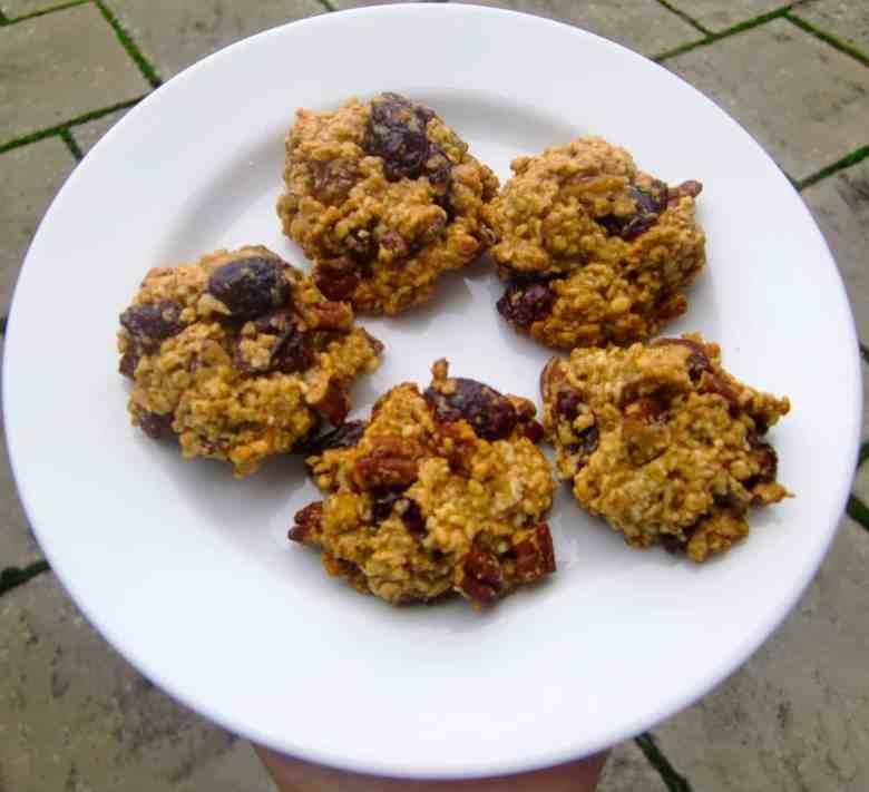 Maple Pecan Cranberry Granola Bites (Vegan + GF)