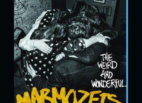 the wierd and wonderful marmozets