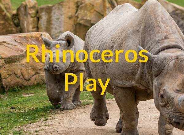 Rhinoceros Play – Don't Confuse by Name!