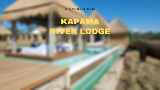 Kapama River Lodge – Reviews | Location | Reserves