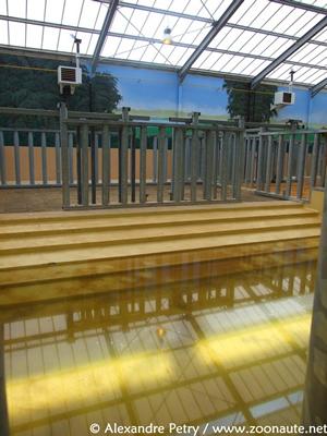 Pool im Haus, 23. Mai 2010