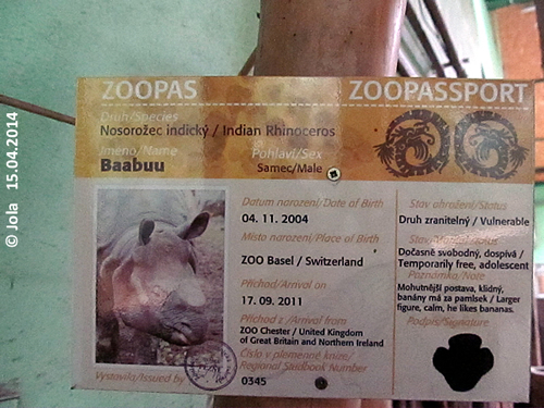 Zoopaß Baabuu