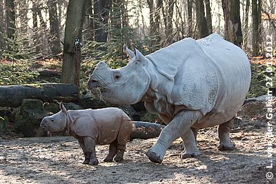 Sunanda mit Mama Saar, 27. Jänner 2012