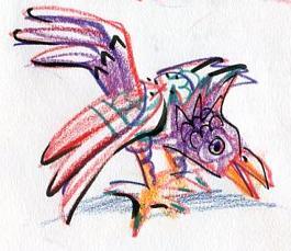 Oaxaca bird