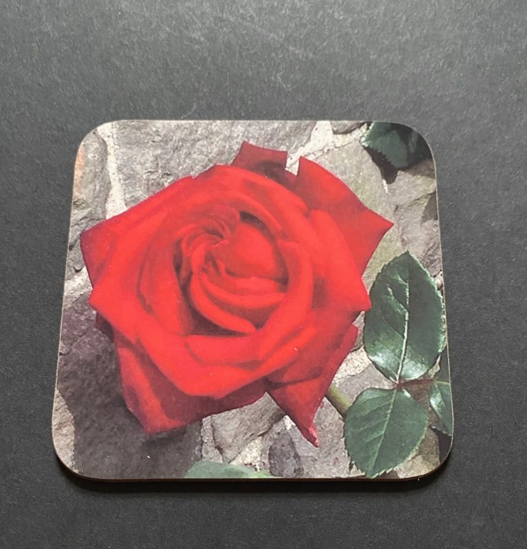 Red Red Rose on a photographic hardboard coaster. Square hardboard coaster with rounded edges. Size: 90x90x3 mm Weight 0.1kg
