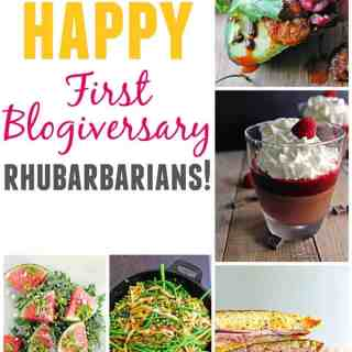 Happy first blogiversary Rhubarbarians! Rhubarbarians officially turns 1 today! We are sharing our favorite recipes from each food genre from the last year. Come take a look!