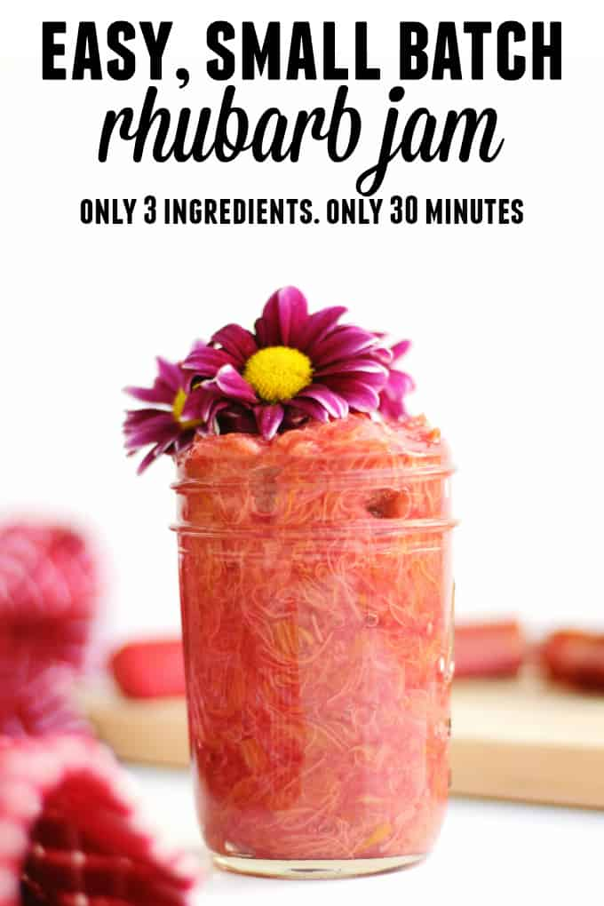 Easy, small batch rhubarb jam recipe! Only 3 ingredients. Only 30 minutes. The easiest way to use up that rhubarb from your garden or farmers market. // Rhubarbarians