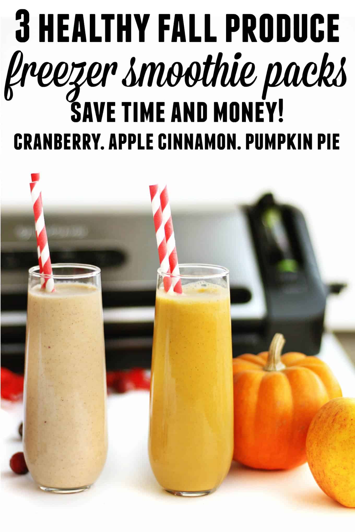 3 healthy, fresh fall freezer smoothie packs recipes! Save time and money by freezing your favorite seasonal produce into ready to make and serve smoothies. // Rhubarbarians // Cranberry yogurt smoothie recipe / Apple cinnamon smoothie recipe / Pumpkin pie smoothie recipe / Grab and go breakfast / Food saver / vacuum sealer / freezer meals / toddler kid friendly snack / #freezerpacks #fallsmoothies #rhubarbarians