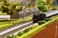 Model Trains on display [2015 Rhythm n Rail]