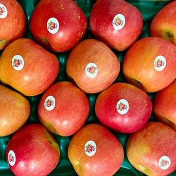 mele fuji italiane mela più