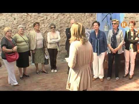 Alzira acull la jornada de Juntes Locals Contra el Càncer