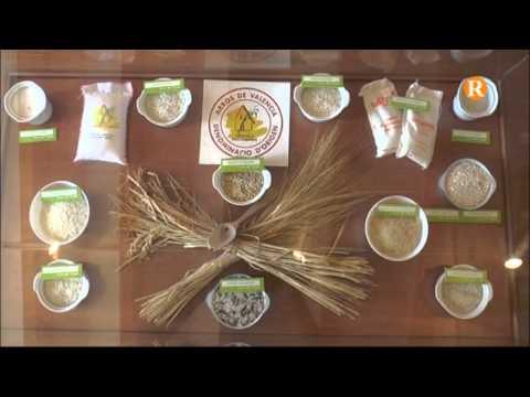 Cullera posa en marxa el mes gastronòmic de l'arròs