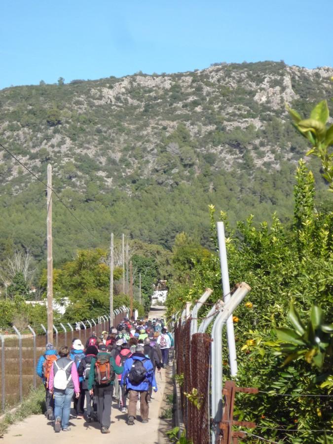 Prop de un centener d'excursionistes participaren ahir en la 4a etapa de la Ruta dels Monestirs