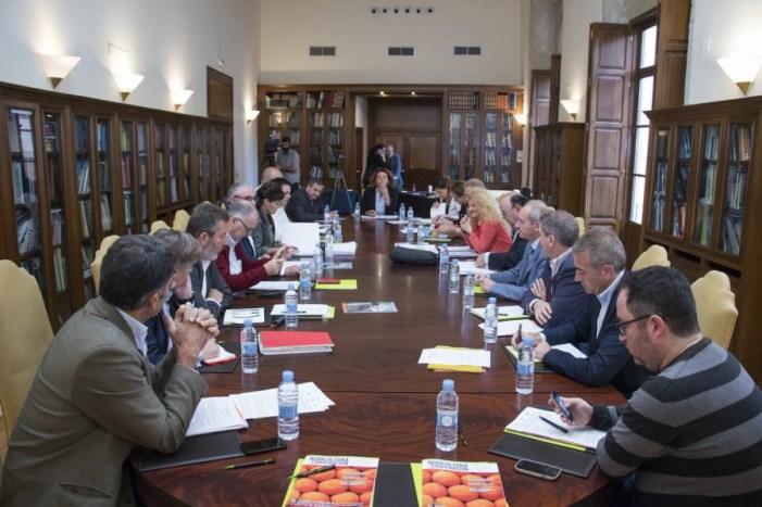 El sector citrícola hispano-franco-italiano pide medidas compensatorias a la UE por el acuerdo con Sudáfrica