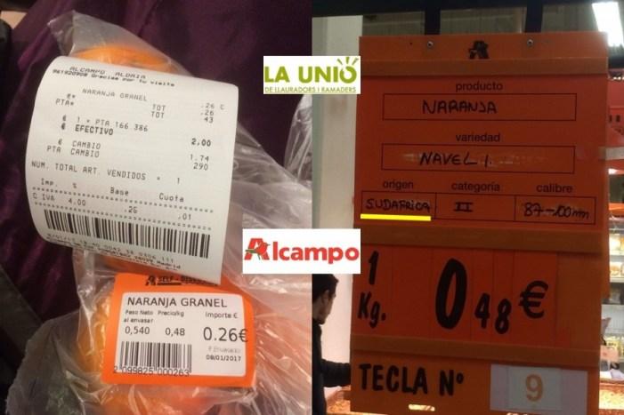 LA UNIÓ denuncia de nou una altra venda de taronges procedents de Sud-àfrica en la cadena de supermercats Alcampo