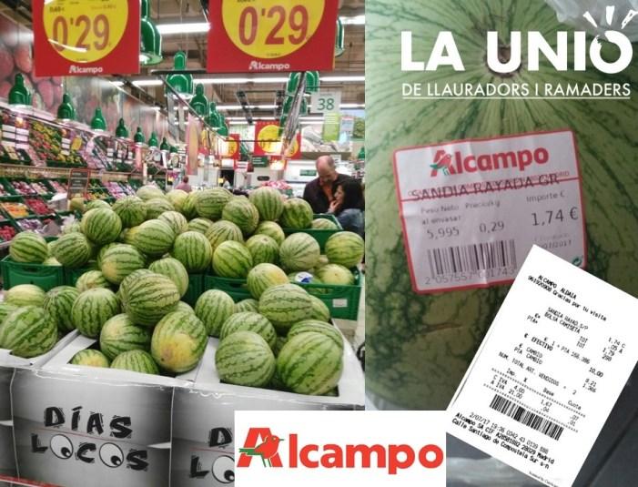 LA UNIÓ de Llauradors denuncia que la gran distribució arrossega a la baixa el preu del meló d'Alger en els centres comercials