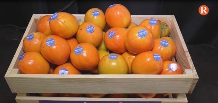 La D.O. Kaki Ribera del Xúquer presenta la campanya de promoció de consum de Persimon