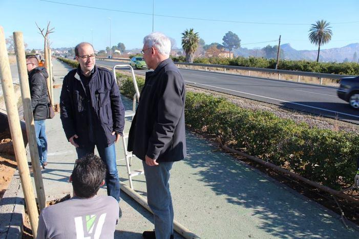 Alzira planta arbres a l'avinguda de la Ribera