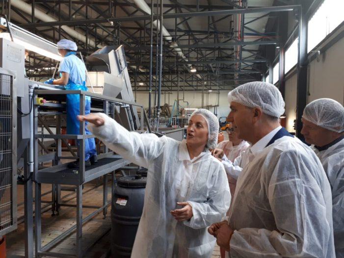 Climent destaca que el sector agroalimentari és 'molt potent en el nostre territori i hem de posar-lo en valor'