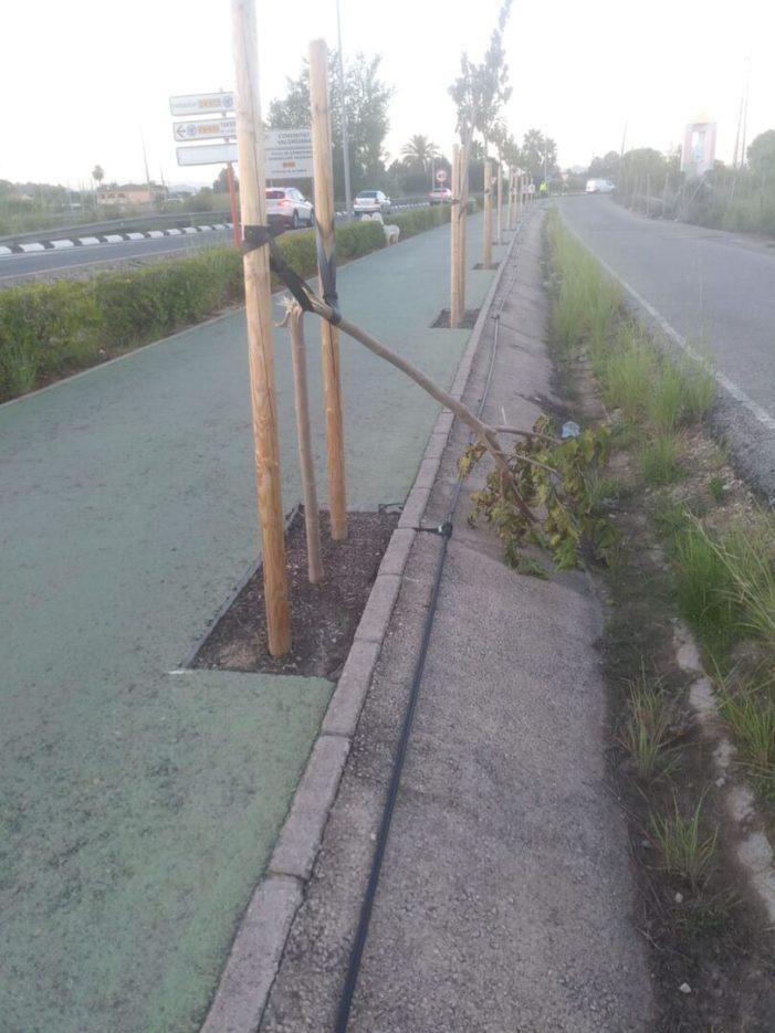 L'Ajuntament d'Alzira condemna l'acte de vandalisme de l'avinguda de la Ribera