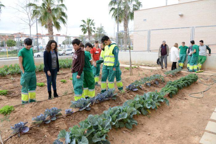 Un conveni entre Ajuntament de Paiporta, ESPAI i IES Andreu Alfaro afavoreix la formació d'11 joves