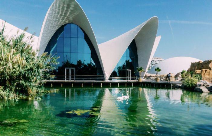 El Oceanogràfic obté la certificació de la seua petjada de carboni