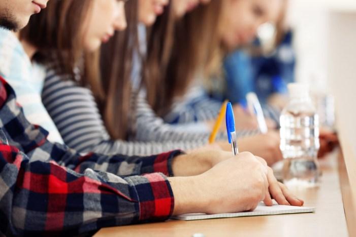 38 noves beques formatives destinades als estudiants de l'Alcúdia