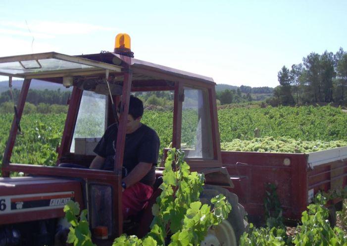 LA UNIÓ alerta d'altra possible pèrdua de fons europeus en el Pla de Suport vitivinícola 2019