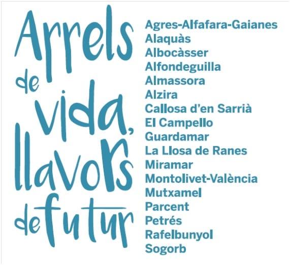 Comissió Organitzadora de la 35ª Trobada de Centres en Valencià d'Alzira 2020