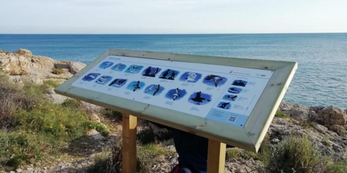 Cullera instal·la panells informatius per a la pràctica del Bird Watching al Cap del Far