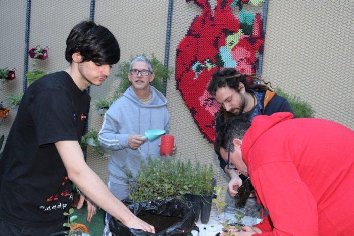 Intervencions artístiques, exposicions i tallers pel Dia de l'Arbre a Aldaia