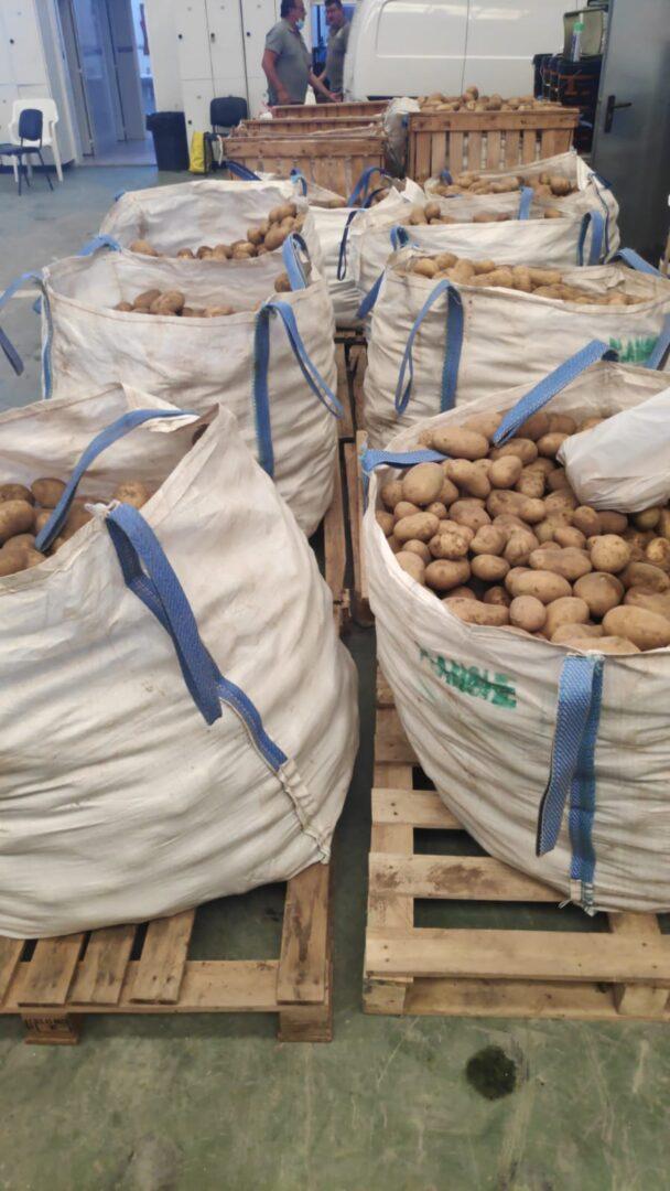 Un llaurador prefereix donar 8.000 kg de creïlles per a sectors vulnerables del poble