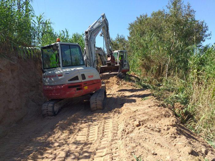 Ha començat la neteja de canyes al riu Xúquer al seu pas per Alzira